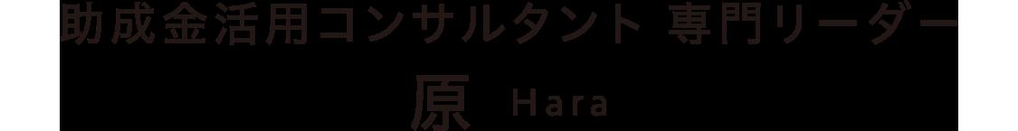 助成金活用コンサルタント 専門リーダー 原 Hara